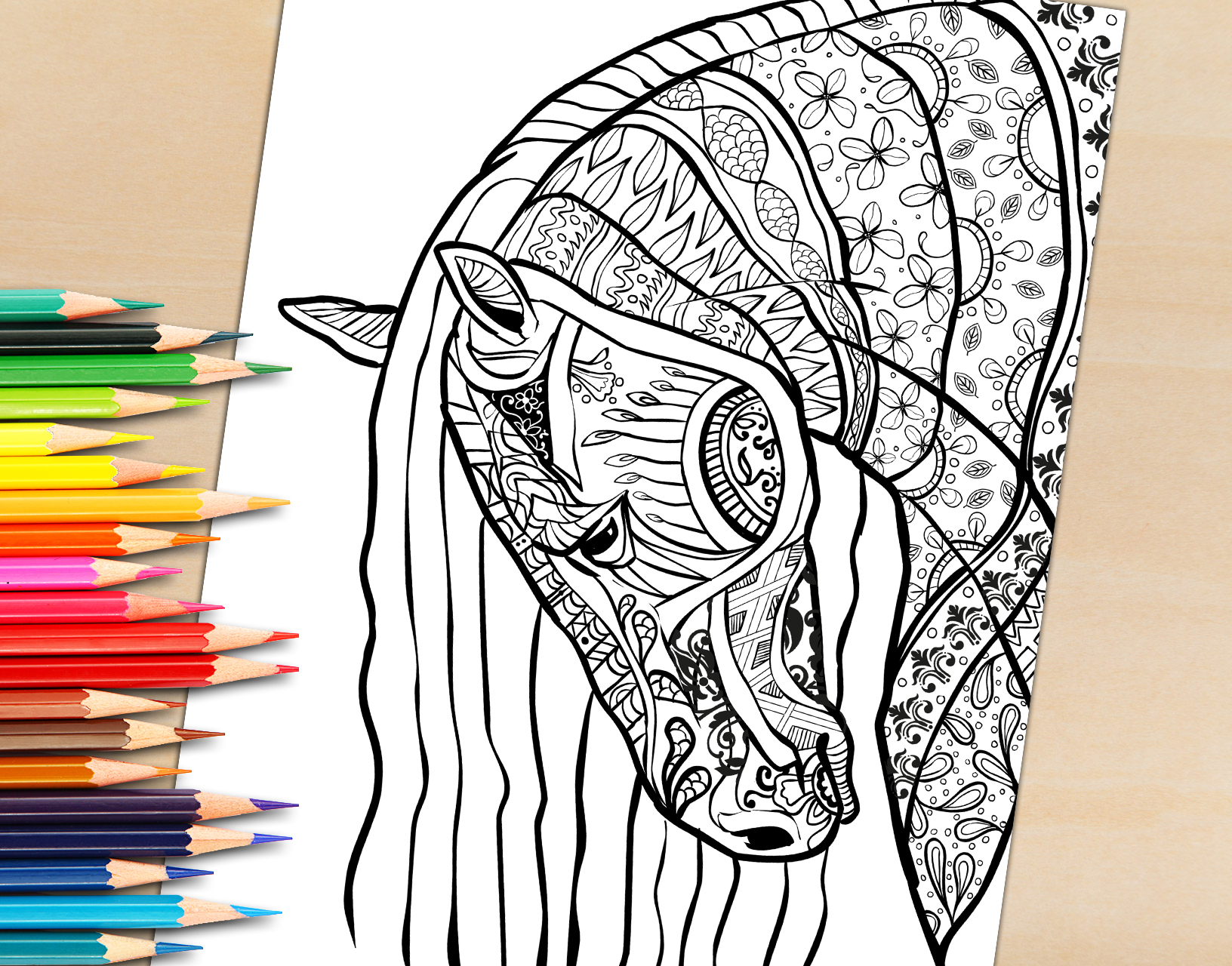 Adult Coloring Book Page, Beautiful Stallion For Adult Coloring To Download