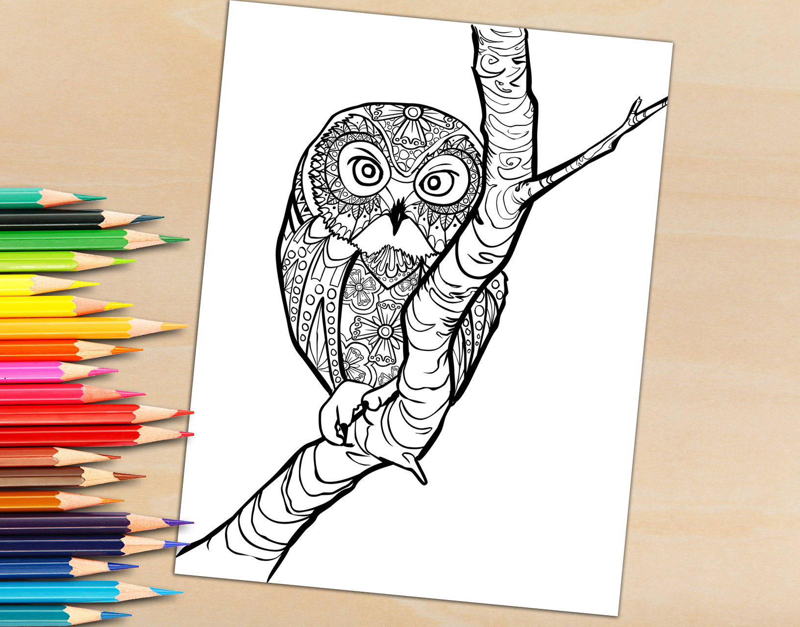 Adult Coloring Book Page, Owl in a tree Coloring Page for Adults for Download