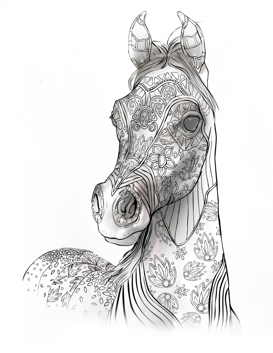 Coloring Books For Adults For Horse