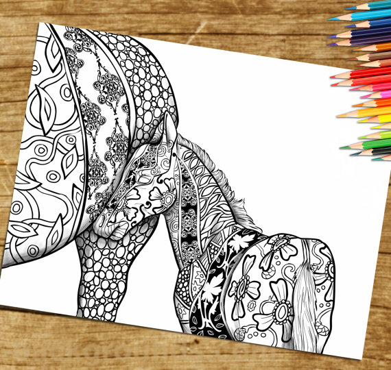 Coloring Page For Adults Print And Download Horse Foal