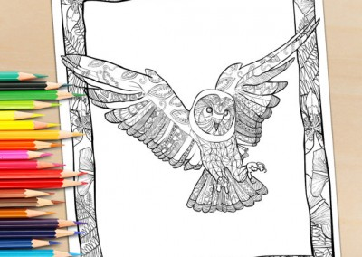 Adult Coloring Page From Coloring book, Owl in Flight – Adult Coloring Page For Download