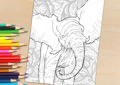 Adult Coloring Book Page, Cute Baby Elephant To Color – Just Download and Print
