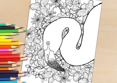 Adult Coloring Page From Coloring book, Flamingo For Coloring – Download To Print