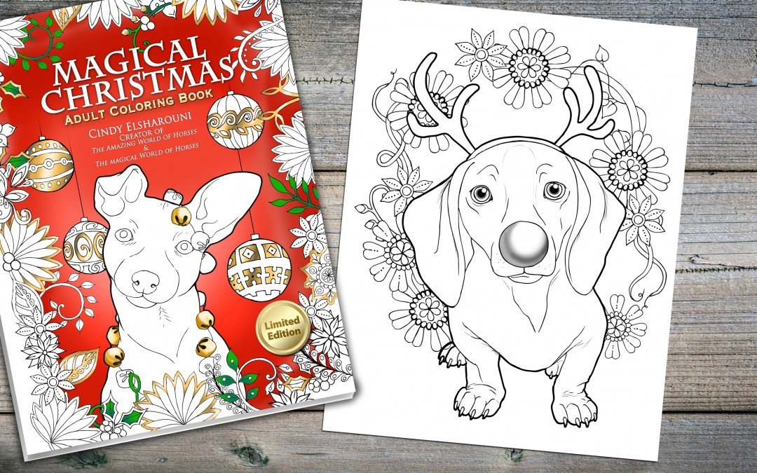 Magical Christmas Adult Coloring Book