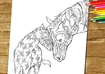 Coloring Book Page For Adults. Horse foal