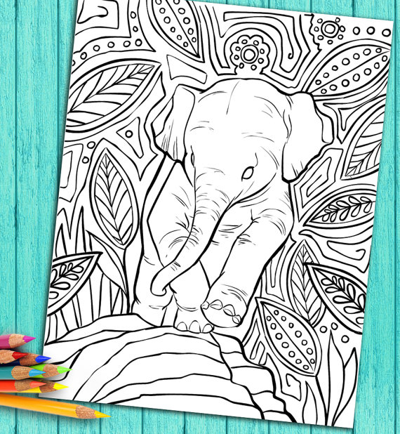 Coloring Book Page For Adults – Baby Elephant