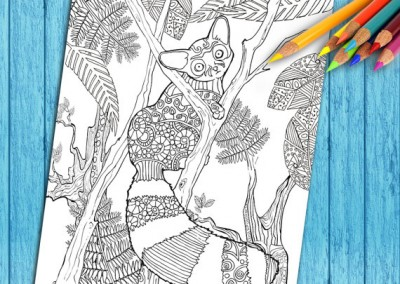 Adult Coloring Book Pages, To Download and Print!