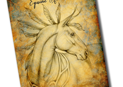 Equine Moments Diary